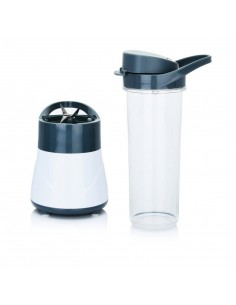 Mini blender 300 Watt Smoothie 2 Go